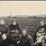 Коллектив библиотеки на уборке урожая 1960 г.